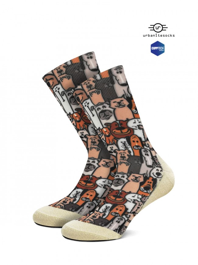 calcetines de razas de perros.