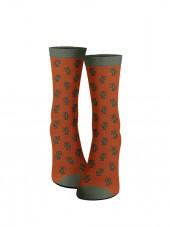 Calcetines de cactus naranjas. frontal